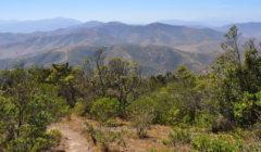 Santa Inés nature reserve Chile