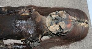 """""""Momias de Chinchorro"""" – an endangered cultural treasure"""