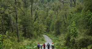 """NGO Ethical Traveler ranks Chile among the world's """"most ethical tourist destinations"""""""