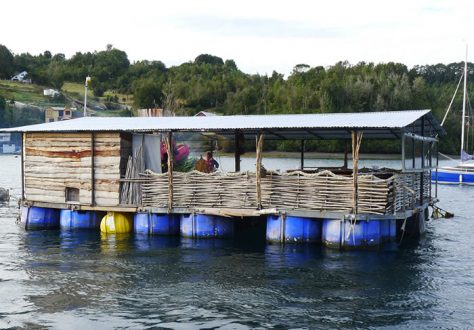 Curanto in a floating restaurant