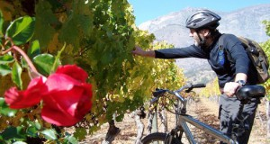 Maipo Valley is one of the world´s best wine regions to visit